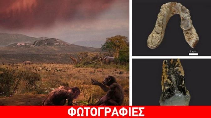 Αλλάζει η ιστορία: Graecopithecus, ο πρώτος άνθρωπος που ίσως να εμφανίστηκε στην Ελλάδα!
