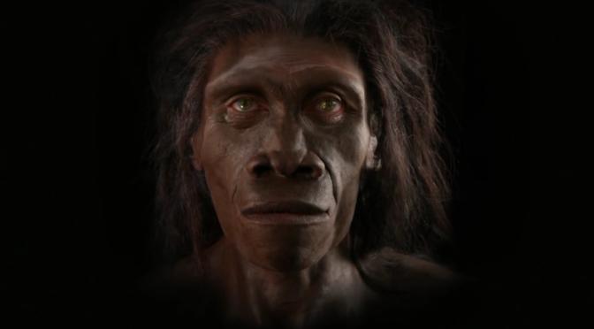 Η εξέλιξη του ανθρώπινου είδους σε 90 δευτερόλεπτα (βίντεο)