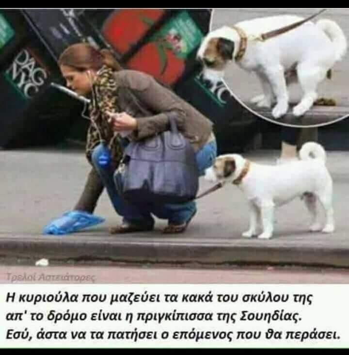 FB_IMG_1519313165434