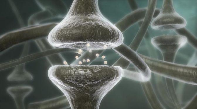Πώς οι σκέψεις μας αλλάζουν τον εγκέφαλο, τα κύτταρα και τα γονίδιά μας