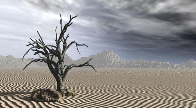 ΟΗΕ: Κίνδυνος για την ανθρωπότητα η καταστροφή της βιοποικιλότητας
