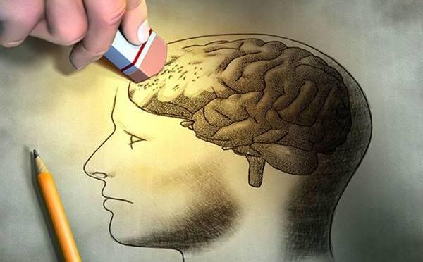 Πειράματα με τον εγκέφαλο. Το πείραμα του Ερικ Κάντελ με το θαλάσσιο σαλιγκάρι