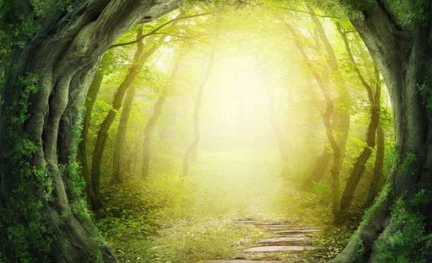 Φύση, Τέχνη και Πνευματικότητα: τρία από τα πιο αποτελεσματικά αντιφλεγμονώδη στη ζωή μας