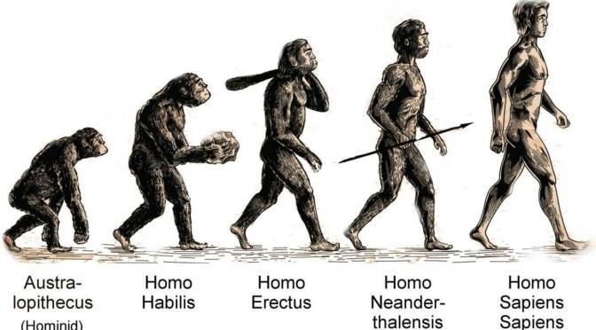 Γιατί όλοι οι επιστήμονες αποδέχονται την εξέλιξη (video)
