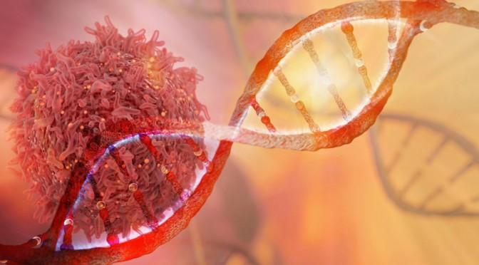 Νέα μελέτη σχετίζει τον καρκίνο με τον αριθμό των σεξουαλικών συντρόφων