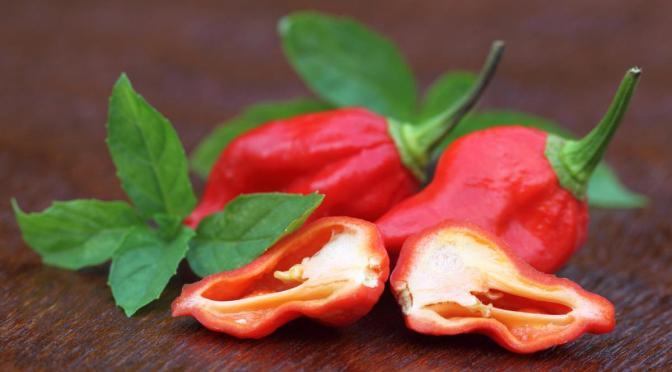 """Καυτερές πιπεριές και Μέντα: Γιατί """"παίζουν"""" με το μυαλό μας;"""
