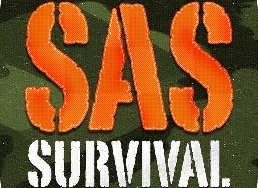 SAS – Οδηγός Επιβίωσης. Σε PDF εντελώς δωρεάν!