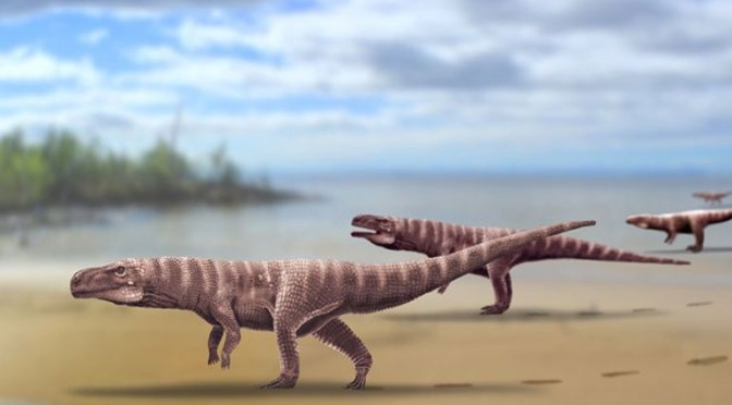 Πατημασιές 115 εκατ. ετών δείχνουν ότι ίσως οι κροκόδειλοι κάποτε περπατούσαν στα δύο πόδια τους