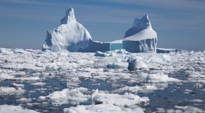 Βρέθηκε απολίθωμα αυγού 66 εκατ. ετών στην Ανταρκτική – Δεν ήξεραν τι είναι για 10 χρόνια (pic)