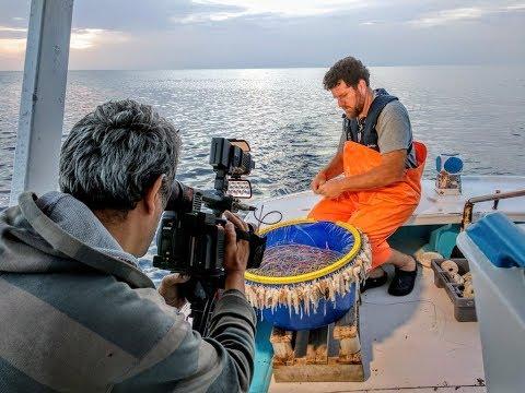 360° – Οδοιπορικό στα νησιά των «γκρίζων ζωνών» Η «μάχη» των Ελλήνων ψαράδων στα Ίμια (ΒΙΝΤΕΟ)