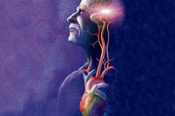 Γεγονότα για τη λειτουργία του εγκεφάλου μας που αποδεικνύουν ότι είμαστε ικανοί για τα πάντα