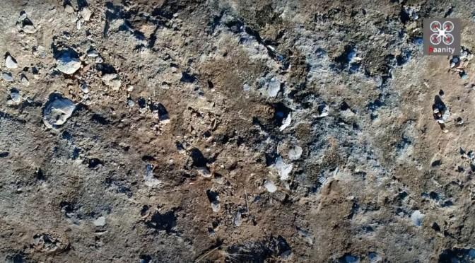 Σπάνια ανακάλυψη: Ο χωματόδρομος χωρίς όνομα με χιλιάδες απολιθωμένα κοχύλια εκατ. ετών (video)
