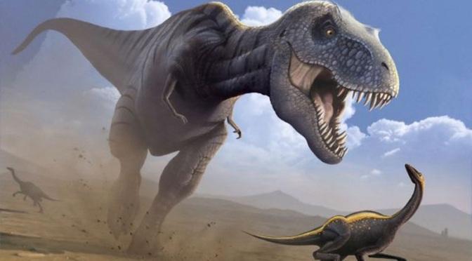 Οι τυραννόσαυροι μπορεί να κυνηγούσαν σε κοπάδια όπως οι λύκοι
