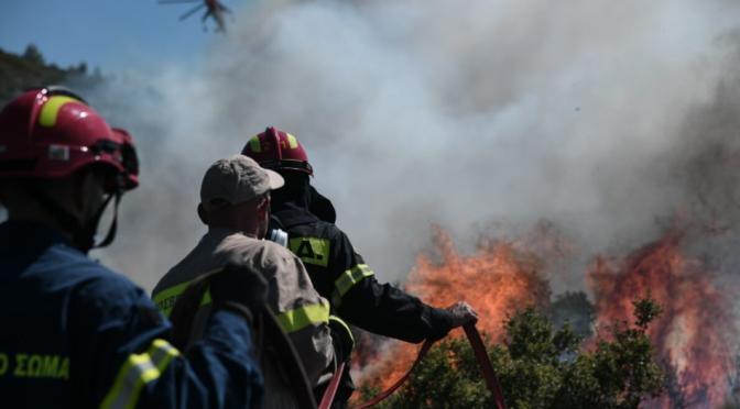 """Πριν πιάσει η φωτιά: τα σχέδια """"αξιοποίησης"""" της περιοχής Βαρυμπόμπης-Κρυονερίου-Τατοΐου"""